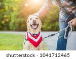 man pets dog while out for a... | Shutterstock . vector #1041712465