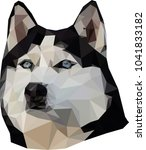 polygonal husky  low poly | Shutterstock .eps vector #1041833182