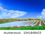 a typical agriculture... | Shutterstock . vector #1041848425