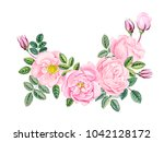 watercolor hand painted pink... | Shutterstock . vector #1042128172