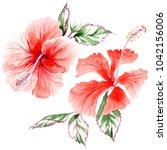 wildflower rose flower in a... | Shutterstock . vector #1042156006