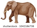 vector colored illustration of... | Shutterstock .eps vector #1042186738