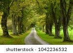 limetree avenue  swabian alp ... | Shutterstock . vector #1042236532