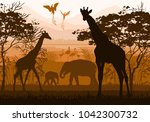 beauty of nature with wild... | Shutterstock . vector #1042300732