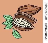vector cocoa bean hand drawn...   Shutterstock .eps vector #1042430938