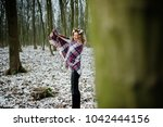 curly cute blonde girl with... | Shutterstock . vector #1042444156