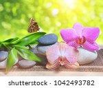 zen pebbles with bamboo leaves...   Shutterstock . vector #1042493782