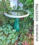 Green Bird Bath Full Of Water...