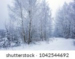 winter forest with great snow.... | Shutterstock . vector #1042544692
