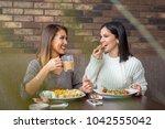 two girlfriends having lunch... | Shutterstock . vector #1042555042