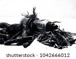 ayurvedic herb liquorice root... | Shutterstock . vector #1042666012