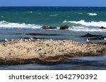 coast of the mediterranean sea... | Shutterstock . vector #1042790392