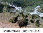 coast of the mediterranean sea... | Shutterstock . vector #1042790416
