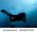 diver silhouette in the reef ... | Shutterstock . vector #1042874155