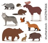 forest animals vector cartoon... | Shutterstock .eps vector #1042969666