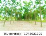 abstract blur walkway with tree ... | Shutterstock . vector #1043021302