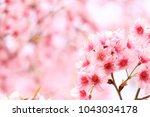 spring border abstract blured... | Shutterstock . vector #1043034178
