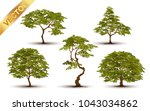collection  beautiful tree... | Shutterstock .eps vector #1043034862