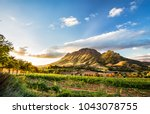 Wine region near Stellenbosch looking at Simonsberg in South Africa