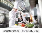 the chef prepares a dish in the ... | Shutterstock . vector #1043087242
