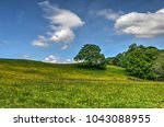 friendly landscape in the... | Shutterstock . vector #1043088955