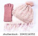 warm winter  women's knitted... | Shutterstock . vector #1043116552
