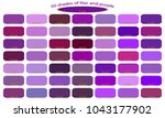 shades of purple  violet and... | Shutterstock .eps vector #1043177902
