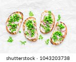grilled bread  soft cheese ...   Shutterstock . vector #1043203738