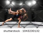 mma fighters on ring | Shutterstock . vector #1043230132