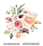 watercolor flowers. floral... | Shutterstock . vector #1043236432