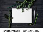 natural composition with... | Shutterstock . vector #1043293582