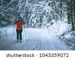 Small photo of Young woman is cross-country skiing while snowing. Active winter. Active recreation. Active life.