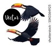 vector toucan bird illustration ... | Shutterstock .eps vector #1043364925