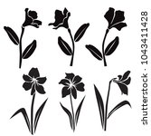 vector silhouettes of flowers ... | Shutterstock .eps vector #1043411428