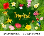 summer tropical frame design... | Shutterstock .eps vector #1043469955