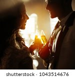 celebration and holidays... | Shutterstock . vector #1043514676