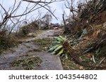 us virgin island home damaged...   Shutterstock . vector #1043544802