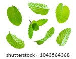 fly fresh raw mint leaves... | Shutterstock . vector #1043564368