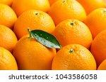 orange fruits with green leaf... | Shutterstock . vector #1043586058