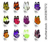 beautiful  butterfly collection ... | Shutterstock . vector #1043587072