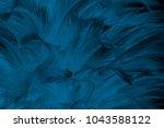 Beautiful Close Up Dark Blue...