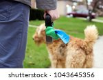 Stock photo man picking up cleaning up dog droppings 1043645356