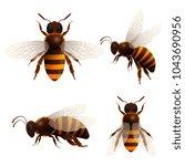 honeybee isolated set on white... | Shutterstock .eps vector #1043690956
