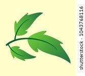 vector branch with green... | Shutterstock .eps vector #1043768116