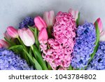 hyacinth blue and pink fresh... | Shutterstock . vector #1043784802