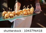 a waiter with a tray of snacks... | Shutterstock . vector #1043796418