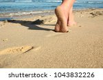 a footprints in the sand on the ... | Shutterstock . vector #1043832226