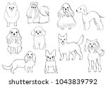 group of small dogs hand drawn   Shutterstock .eps vector #1043839792