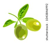green olives on a branch.... | Shutterstock .eps vector #1043846992
