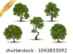 collection  beautiful tree... | Shutterstock .eps vector #1043855092